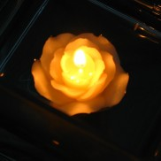 Floating Rose Candles (6 Pack)