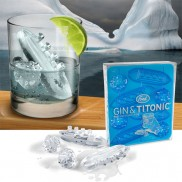 Gin And Titonic Ice Cube Tray