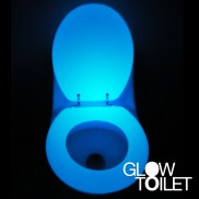 Glow in the Dark Toilet Seat