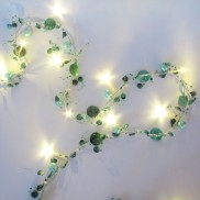 Green Opal Shell String Lights