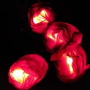 20 Red Rose String Lights